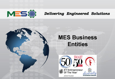 mes-business-entities